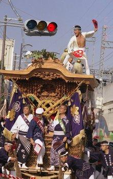 だんじり祭り.JPG